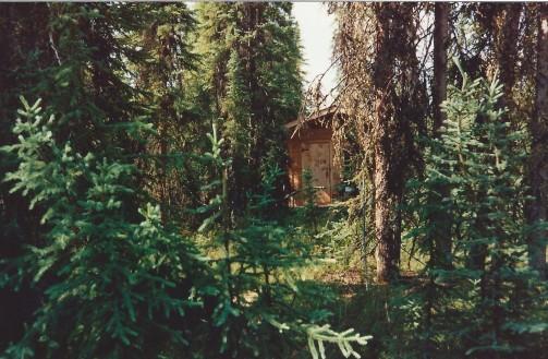 gordons-cabin
